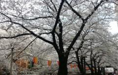 崎本大海 公式ブログ/本日『ハモネプ☆スターリーグ』 画像1