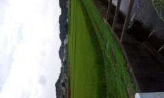 崎本大海 公式ブログ/田んぼ三兄弟 画像1