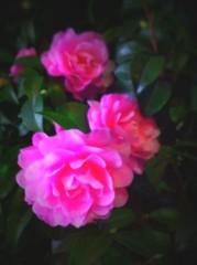 Katie Se7en 公式ブログ/ありがとうございました☆ 画像1