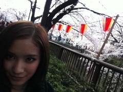 Happiness 公式ブログ/桜に色づく〜 YURINO 画像1