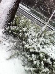 Happiness 公式ブログ/雪〜 SAYAKA 画像1