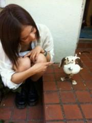 Happiness 公式ブログ/わんこ!YURINO 画像1