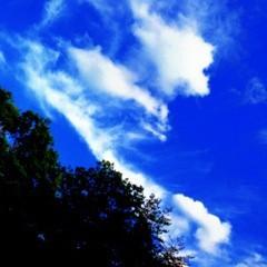 Happiness 公式ブログ/あれ? 須田アンナ 画像1