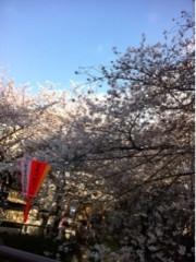 Happiness 公式ブログ/桜。KAEDE 画像1
