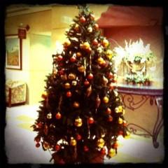 Happiness 公式ブログ/Happiness Merry Christmas!!KAEDE 画像1