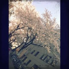 Happiness 公式ブログ/満開 SAYAKA 画像1