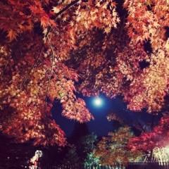 福田ゆみ 公式ブログ/ゆみ散歩in京都 画像2