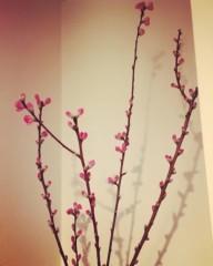 福田ゆみ 公式ブログ/春の訪れ 画像1