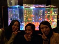大峰渓 公式ブログ/金魚! 画像1