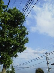 日下部慶久 公式ブログ/morning 画像1