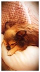 大西颯季 公式ブログ/月曜日 // 画像1