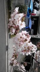 大西颯季 公式ブログ/春が近づいてきたね♪ 画像1