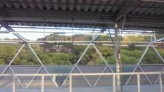 賀川照子 公式ブログ/24日社会の窓 画像1