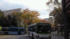 賀川照子 公式ブログ/15日盛りだくさん 画像1