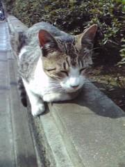 賀川照子 公式ブログ/4月20日の日記 画像1
