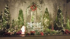 賀川照子 公式ブログ/2日クリスマスに向けて 画像1