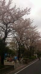賀川照子 公式ブログ/29日今でしょ!? 画像1