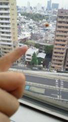ジャガー横田 公式ブログ/てんとう虫!?(*^^*) 画像1
