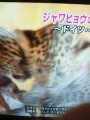 ジャガー横田 公式ブログ/赤ちゃん・・・ 画像1