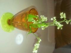 ジャガー横田 公式ブログ/お花のプレゼント!?(*^_^*) 画像2