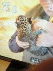 ジャガー横田 公式ブログ/赤ちゃん・・・ 画像2