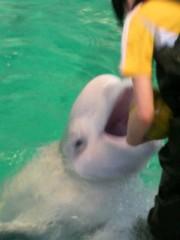 ジャガー横田 公式ブログ/名古屋港水族館に行って来ました! !(^-^)v 画像3