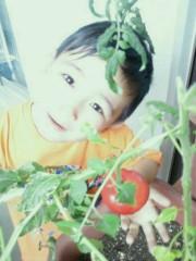 ジャガー横田 公式ブログ/家庭菜園!(*^_^*) 画像1