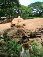 ジャガー横田 公式ブログ/ホノルル動物園!(o^-')b 画像3