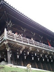 岡内美喜子 公式ブログ/日本最大♪ 画像2