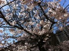 遠藤由香 公式ブログ/お花見PART2 画像2