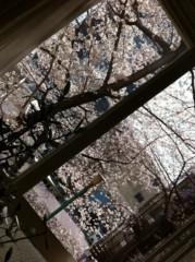 遠藤由香 公式ブログ/お花見PART2 画像1