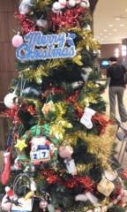 小多田直樹 公式ブログ/クリスマスツリー♪ 画像1