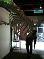 ウエイスト プライベート画像 クジラ
