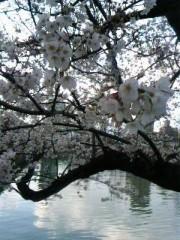 ウエイスト 公式ブログ/明日は京都祭り 画像1
