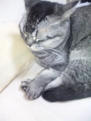 小川みこと 公式ブログ/ふう。 画像1