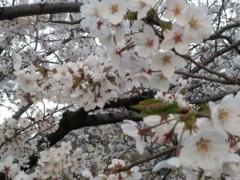 加藤ゆき 公式ブログ/おはよう☆ 画像2