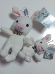 加藤ゆき 公式ブログ/ブタウサギ 画像1
