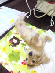 加藤ゆき 公式ブログ/おはよう〜 画像1