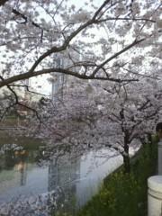 加藤ゆき 公式ブログ/おはよう☆ 画像3