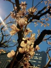 加藤ゆき 公式ブログ/オハヨー。 画像1