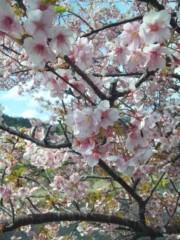 加藤ゆき 公式ブログ/オヤスミ〜 画像1
