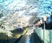 天地総子 公式ブログ/春風に誘われて 画像1