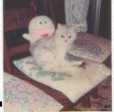 天地総子 公式ブログ/ネコ可愛がり 画像1