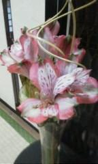 天地総子 公式ブログ/春は、まだはるか?・・・ 画像1