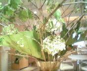 天地総子 公式ブログ/春の雨 画像1