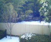 天地総子 公式ブログ/東京雪景色 画像1