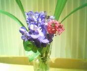 天地総子 公式ブログ/春の雨 画像2