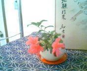 天地総子 公式ブログ/つつじの花に癒されて 画像2