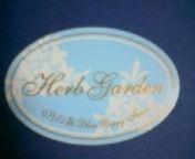 天地総子 公式ブログ/「6月の森」ブルーベリーチーズケーキ、美味礼讃 画像2
