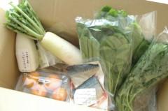 川島令美 公式ブログ/お野菜たち。 画像1